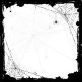 Allhelgonaaftonbakgrund med spindlar Arkivbilder