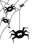 Allhelgonaaftonbakgrund med svarta spindlar över vit bakgrund Arkivbild