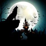 Allhelgonaaftonbakgrund med vargen på fullmånen Royaltyfria Bilder