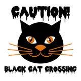 Allhelgonaaftondesign med den färgrika katten royaltyfri illustrationer