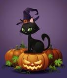 Allhelgonaaftonhäxas katt på pumpa stock illustrationer