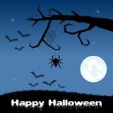 Allhelgonaaftonnatt - spindelrengöringsduk och slagträn royaltyfri illustrationer