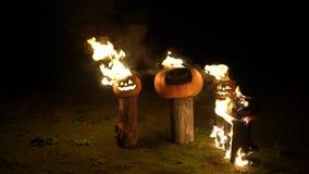 Allhelgonaaftonpumpor i brand på träd loggar in mörker, fältet, mist, skymning Läskig rolig ilsken stor orange pumpa utandas bran lager videofilmer