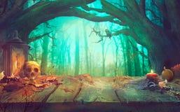 Allhelgonaaftontema med pumpor och spöklik allhelgonaafton för mörk skog arkivbilder