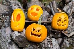 Allhelgonaaftonteman Sammansättning av fyra sned halloween pumpor på träbakgrund Pumpor med olika halloween vänder mot Royaltyfri Bild
