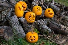 Allhelgonaaftonteman Sammansättning av sex sned halloween pumpor på träbakgrund Pumpor med olika halloween vänder mot Royaltyfri Fotografi