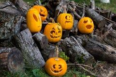 Allhelgonaaftonteman Sammansättning av sex sned halloween pumpor på träbakgrund Pumpor med olika halloween vänder mot Arkivfoton
