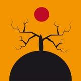 Allhelgonaaftonträd Arkivfoton