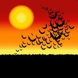 Allhelgonaaftonvektorbakgrund med slagträn. Arkivbild