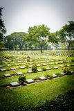 Allied military cemetery Stock Photo