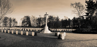 Allied soldiers graves Royalty Free Stock Photo