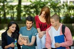 allievi che studiano all'esterno Immagini Stock Libere da Diritti