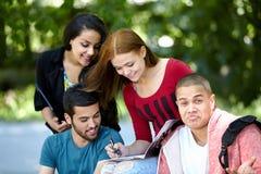 allievi che studiano all'esterno Immagini Stock