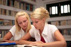 Allievi che studiano nella libreria Immagini Stock Libere da Diritti