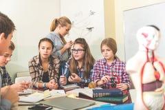 Allievi di conversazione attenti a scuola Fotografia Stock