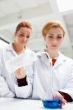 Allievi di scienza che fanno un esperimento Immagine Stock