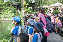 Allievi ed insegnanti allo zoo di Singapore Fotografia Stock Libera da Diritti