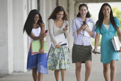 Allievi femminili teenager che texting Fotografie Stock Libere da Diritti