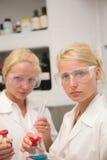 Allievi in laboratorio Fotografie Stock Libere da Diritti