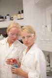 Allievi in laboratorio Fotografia Stock Libera da Diritti