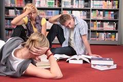 Allievi laboriosi nella libreria Fotografia Stock