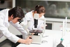 Allievi seri di scienza che per mezzo di un microscopio Fotografie Stock Libere da Diritti