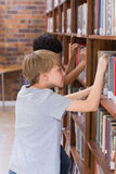 Allievi svegli che cercano i libri in biblioteca Fotografia Stock Libera da Diritti