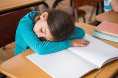 Allievo addormentato che si siede allo scrittorio Fotografia Stock