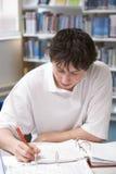 Allievo che studia nella libreria Fotografie Stock