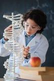 Allievo di talento che studia genomica alla scuola Immagini Stock