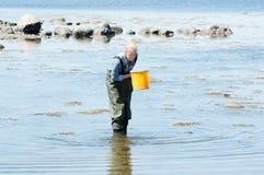 Allievo femminile in acqua Immagine Stock Libera da Diritti