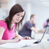 Allievo femminile grazioso con il computer portatile Immagine Stock Libera da Diritti