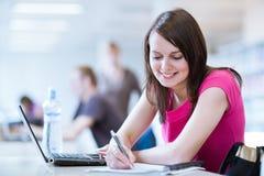 Allievo femminile grazioso con il computer portatile Immagine Stock