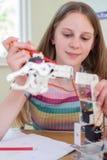 Allievo femminile nella lezione di scienza che studia robotica Immagini Stock Libere da Diritti