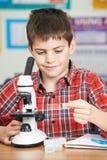 Allievo maschio che utilizza microscopio nella lezione di scienza Immagine Stock Libera da Diritti