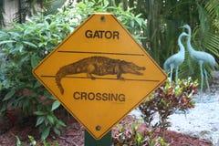 Alligatorüberfahrtzeichen Stockfotografie