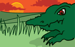 Alligator stock illustratie