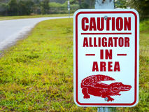 Alligator in the area caution sign Stock Photos
