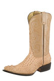 Alligator Boot. A tan alligator leather boot Royalty Free Stock Photo