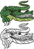 Alligator Cartoon Royalty Free Stock Images