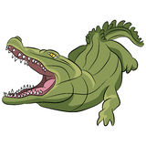 Alligator Cartoon Royalty Free Stock Photography