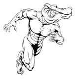 Alligator or crocodile mascot running Stock Image