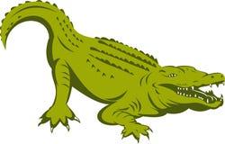 Alligator environ à attaquer illustration de vecteur