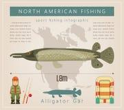 Alligator Gar Stock Images