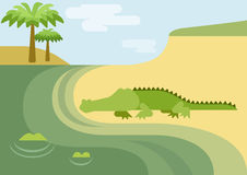 Alligator gator crocodile flat cartoon wild animal reptile Royalty Free Stock Images