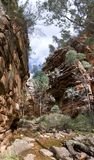 Alligator Gorge. A vertical panorama of the sheer cliffs of red rock towering high above the creek at Alligator Gorge, Flinders Ranges, South Australia Stock Photography