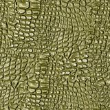 Alligator Hide. Seamless Texture Tile from Photographic Original royalty free stock photography