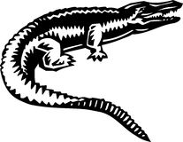 Alligator Illustration. Line Art Illustration of an Alligator Stock Photo