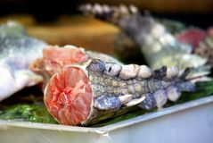 Alligator meat, Guangzhou, China Stock Image