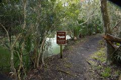 Alligator path is marked to warn hikers of the danger ahead. Alligators become easier to see on land as the weather gets warmer stock images
